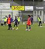 FC Hertha 03 Zehlendorf, Berlin